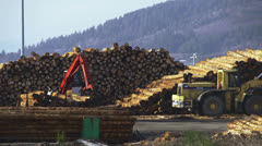 Grapple Loaders and Yarder Maneuvering in Log Deck 1 Stock Footage