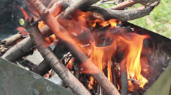 Burning branches Stock Footage