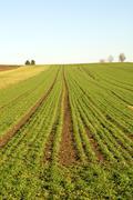rural scene, germany - stock photo