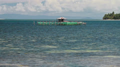188 Fish breeding in the sea, Philippines Stock Footage
