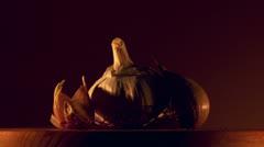 garlic food group - stock footage