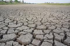 concept image of global warming. - stock photo