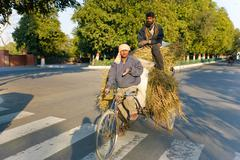 Stock Photo of delhi - february 12: two men transporting grass using a rickshaw bicycle on f