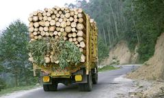 truck carrying timber through hills, south india - stock photo
