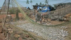Two local people, man and woman, drying fish on beach - stock footage