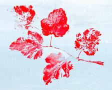 Monotypy with red maple leaves Stock Illustration