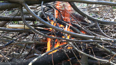 Campfire with sound. Stock Footage