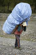 porters carrying heavy loads on their back, annapurna, nepal - stock photo