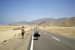 desert road in the red sea region, sinai, egypt - stock photo