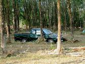 Car wrapped around tree after tsunami, khao lak, thailand Stock Photos