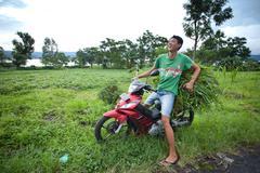 Stock Photo of grass transportation