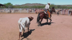 Big Bend Ranch 1 Stock Footage