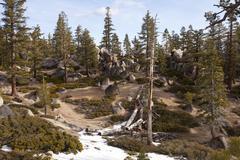 Sierra Nevada mountains Lake Tahoe shore Stock Photos