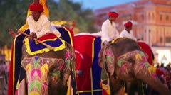 JAIPUR, RAJASTHAN, INDIA - APRIL, 2013: Traditionally painted elephants and Stock Footage