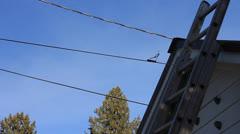 Power lines overhead Stock Footage