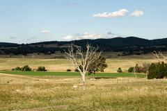 Country scene Stock Photos
