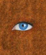 Blue eye over brown texture Stock Photos