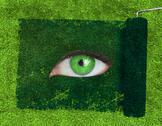 Paint roller revealing a green eye Stock Photos