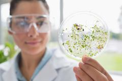 Chemist holding a pane with tests of plants Stock Photos