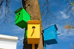 Three colorful birdhouse attached to a tree against the sky Stock Photos
