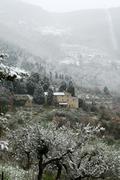 Tuscan winter scene Stock Photos