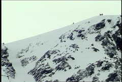 Big Mountain Ski Crash! Stock Footage