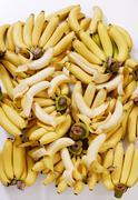 yellow bananas - stock photo