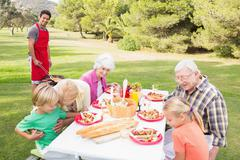 Happy family having a barbeque in the park - stock photo