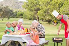 Family enjoying a barbeque in the park - stock photo