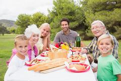 Portrait of multi-generation family at picnic table - stock photo