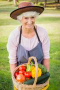 Smiling elderly woman carrying basket of vegetables - stock photo