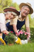 Retired couple gardening together and smiling portrait - stock photo