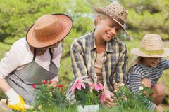 Stock Photo of Three generations of women gardening