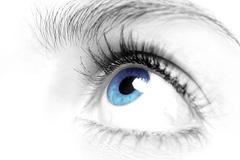 Females blue eye close up Stock Photos