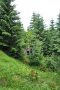 Bunker in the forrest Stock Photos