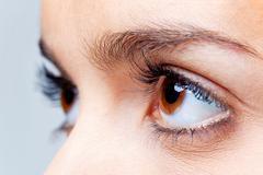 Big brown eyes Stock Photos
