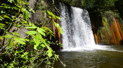 cloudforest waterfall, wide angle foliage background - stock footage