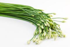 chives flower - stock photo
