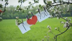 Declaration of love on spring tree Stock Footage