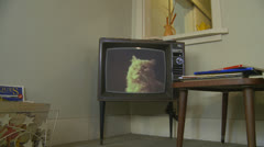 1960's  Cat food commercial on old tv Stock Footage