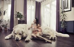 young woman hugging big dog - stock photo