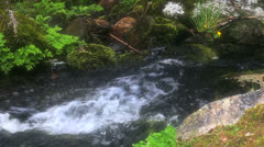 Watercourse 06 - stock footage