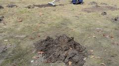 Garden work man with rake corrects mole-hills Stock Footage