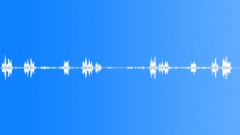 Beautiful Birdsong - sound effect