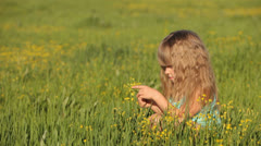 Lovely kid sitting in field and picking flowers - stock footage