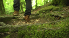 Walking on roots in the forest in slow motion (200fps) - stock footage