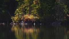 Alaskan Forest Reflection Lake in Autumn 1 Fish Jump Stock Footage