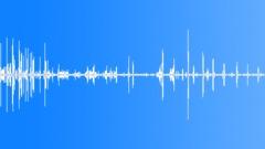 Ducks Quack Sound Effect