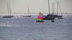 Leigh On Sea Sail Boats 2 Stock Footage
