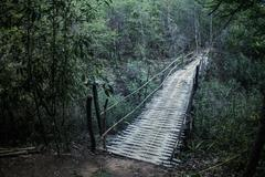 Primitive bamboo bridge with handrails for crossing a river in the jungle Stock Photos